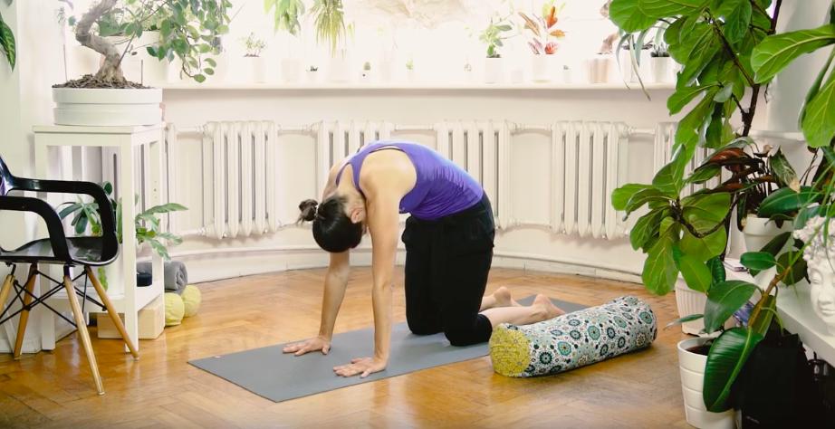 Bitilasana joga podstawowe asany