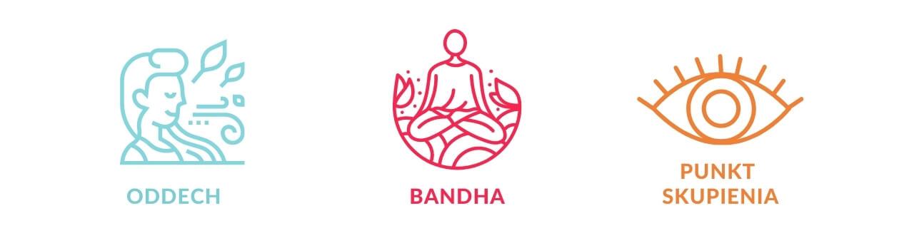 elementy ashtanga jogi