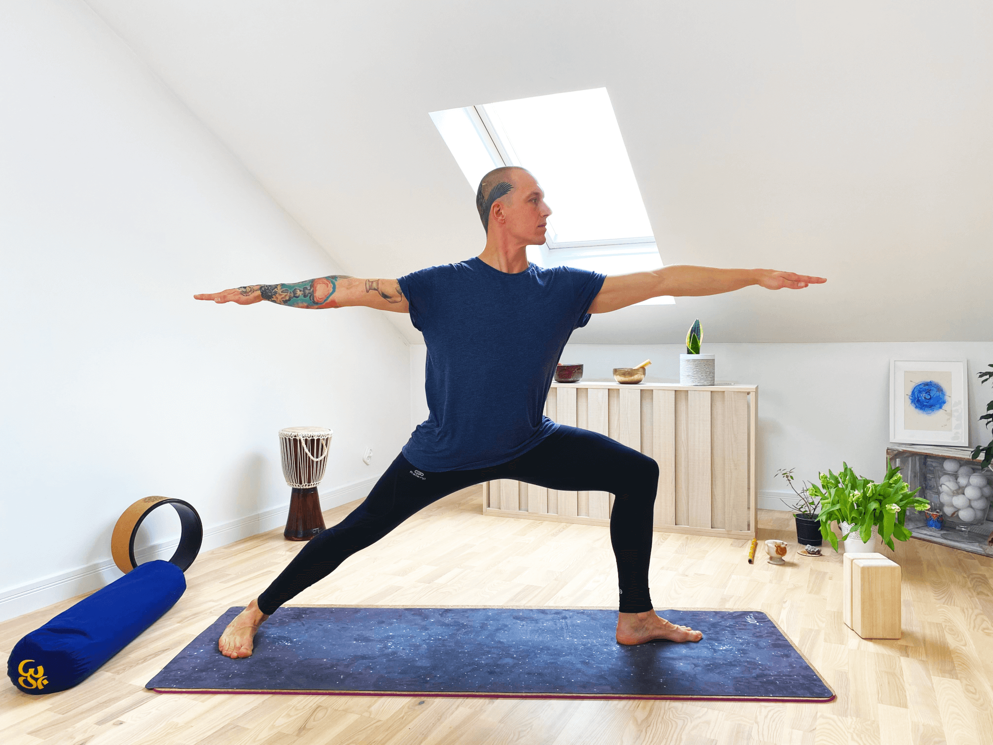 style jogi hatha joga