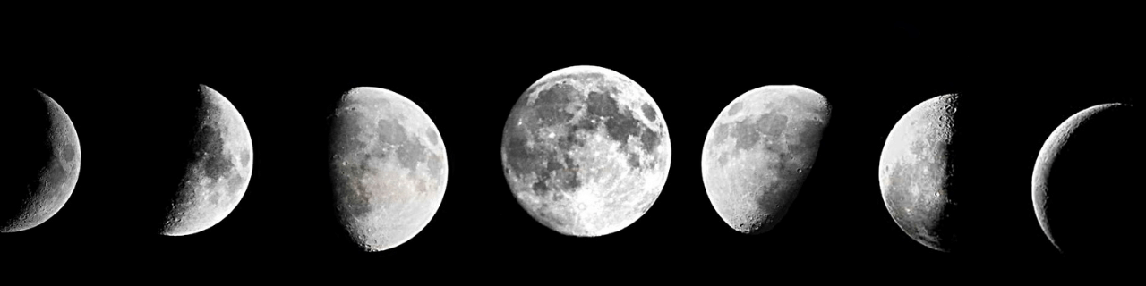 księżyc wnowiu