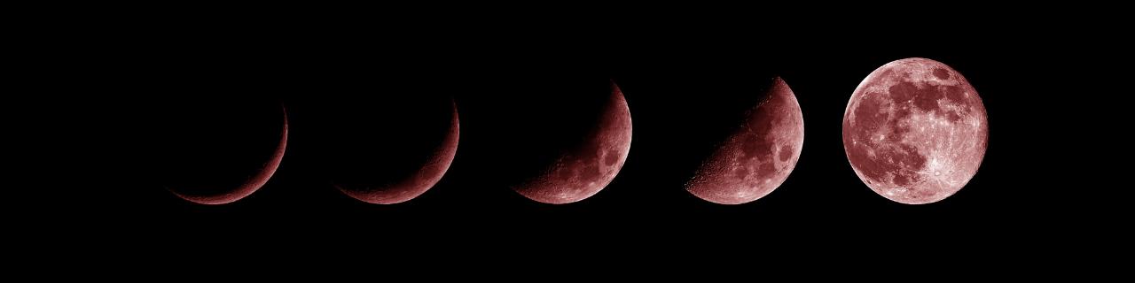 pełnia księżyca wbyku